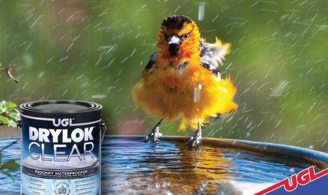 Ugl Blog Drylok Clear Bird Bath