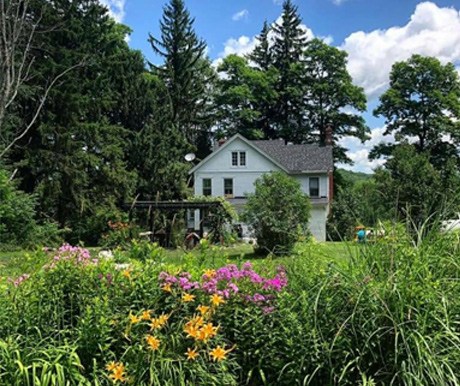 back of 19th century white house and field of flowers